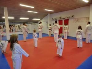 Fælles træning. Der hilses på det koreanske og danske flag inden træningen begynder
